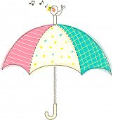 stock photo of songbird  - Vector illustration of songbird on top of an umbrella - JPG
