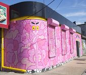 Pink panther mural at East Williamsburg neighborhood in Brooklyn