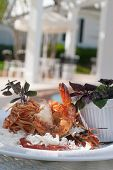 Shrimp And Pasta Dish With Fresh Parmesan