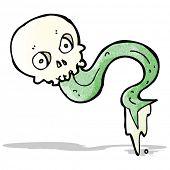 gross skull cartoon