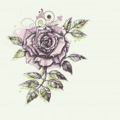 Rose flower foliage corner decoration