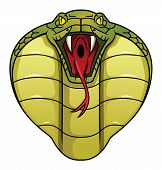 picture of king cobra  - cobra Editable  - JPG