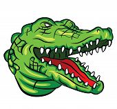 pic of gator  - Crocodile Head Editable  - JPG