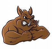 stock photo of razorback  - Wild Boar Editable  - JPG