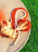 Elegant Hat, Pearl Necklace, Beads, Seashells On The Grass