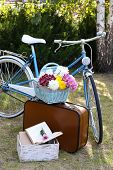 Bicycle and brown suitcase with picnic set in shadow in park