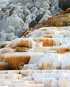 foto of mammoth  - Mineral formations at the Mammoth hot springs area in Yellowstone national Park - JPG