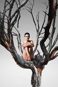 Sensual Woman Sitting On Tree