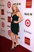 LOS ANGELES - OCT 17:  Jessica Capshaw at the 10th Annual GLSEN Respect Awards at Regent Beverly Wilshire on October 17, 2014 in Beverly Hills, CA
