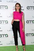 LOS ANGELES - OCT 18:  Stana Katic at the 2014 Environmental Media Awards at Warner Brothers Studios on October 18, 2014 in Burbank, CA