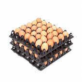 Stack Of Eggs In Tray On White