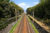 Railroad In Japan