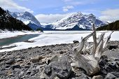 foto of driftwood  - Winter view of a frozen lake with driftwood in the Rocky Mountains of Canada - JPG