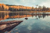 stock photo of pier a lake  - Beautiful forest and old wooden pier on tranquil lake with trees reflection autumn landscape - JPG