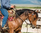 stock photo of cowboy  - Cowboy riding his horse on a loose rein - JPG