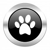 foot black circle glossy chrome icon isolated