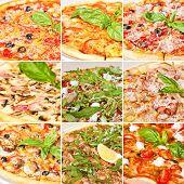 picture of mushroom  - Various pizza collage including spicy pepperoni pizza tomato basil pizza prosciutto mozzarella pizza pizza with panchetta and mushrooms and pizza Margarita - JPG