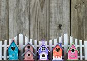 pic of bird fence  - Row of colorful spring birdhouses by white picket fence and rustic wooden background - JPG