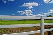 rural spring countryside