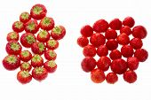 picture of segregation  - Many garden strawberries arranged in two groups - JPG