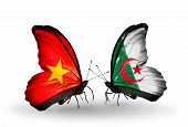 foto of algeria  - Two butterflies with flags on wings as symbol of relations Vietnam and Algeria - JPG