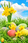 pic of leak  - Easter eggs decoration and daffodils flowers in green grass over cloudy blue sky - JPG