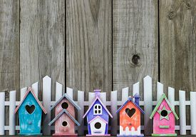 picture of wooden fence  - Row of colorful spring birdhouses by white picket fence and rustic wooden background - JPG