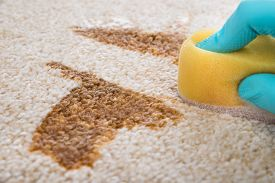 stock photo of disinfection  - Close - JPG