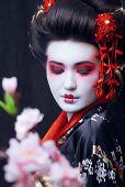 pic of geisha  - young pretty real geisha in kimono with sakura and decoration - JPG