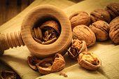 picture of nutcracker  - Healthy food full of omega - JPG