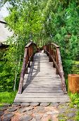 stock photo of ravines  - Wooden bridge over the ravine among the trees and pines - JPG