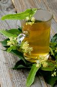 picture of linden-tree  - Glass Cup with Tea of Linden - JPG