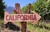 stock photo of mendocino  - California wooden sign with winery background - JPG