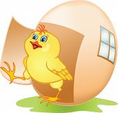 stock photo of pecker  - Cartoon yellow chicken coming out of the egg - JPG