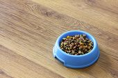pic of laminate  - Dry cat food in blue bowl isolated on wood laminate floor - JPG