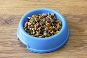 image of laminate  - Dry cat food in blue bowl isolated on wood laminate floor - JPG