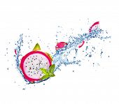 picture of dragon fruit  - Fresh dragon fruit in water splash isolated on white background - JPG
