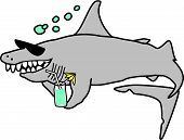 A Happy Shark