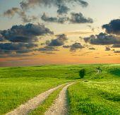 Paisagem de Verão com o verde da grama, estrada e céu dramático