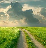 Paisagem de Verão com o verde da grama, estrada e nuvens