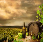 Wine, barrel and vine on background of vineyard