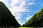 Beautiful Avenue. Paris Frankreich. Weitwinkel-Ansicht.