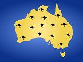 Map Of Australia And Kangaroos poster