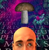 picture of magical-mushroom  - High Resolution Illustration Mushroom and man with text - JPG