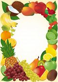 Fresh  fruits vector frame.