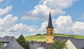 Roofs Of Trittenheim Panorama Germany Picture Panorama poster