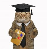 The Cat Teacher In A Square Academic Hat Is Holding A Book  Abc . White Background. poster