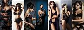 Sexy Women In Beautiful Lingerie. Erotic Underwear Collage. poster