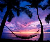Tropical Hammock in Paradise at Sunset