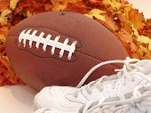 Football Shoes & Leaves